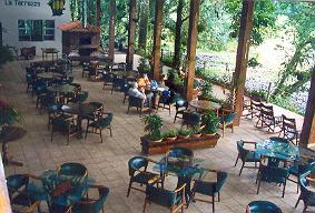 Selva Verde Lounge