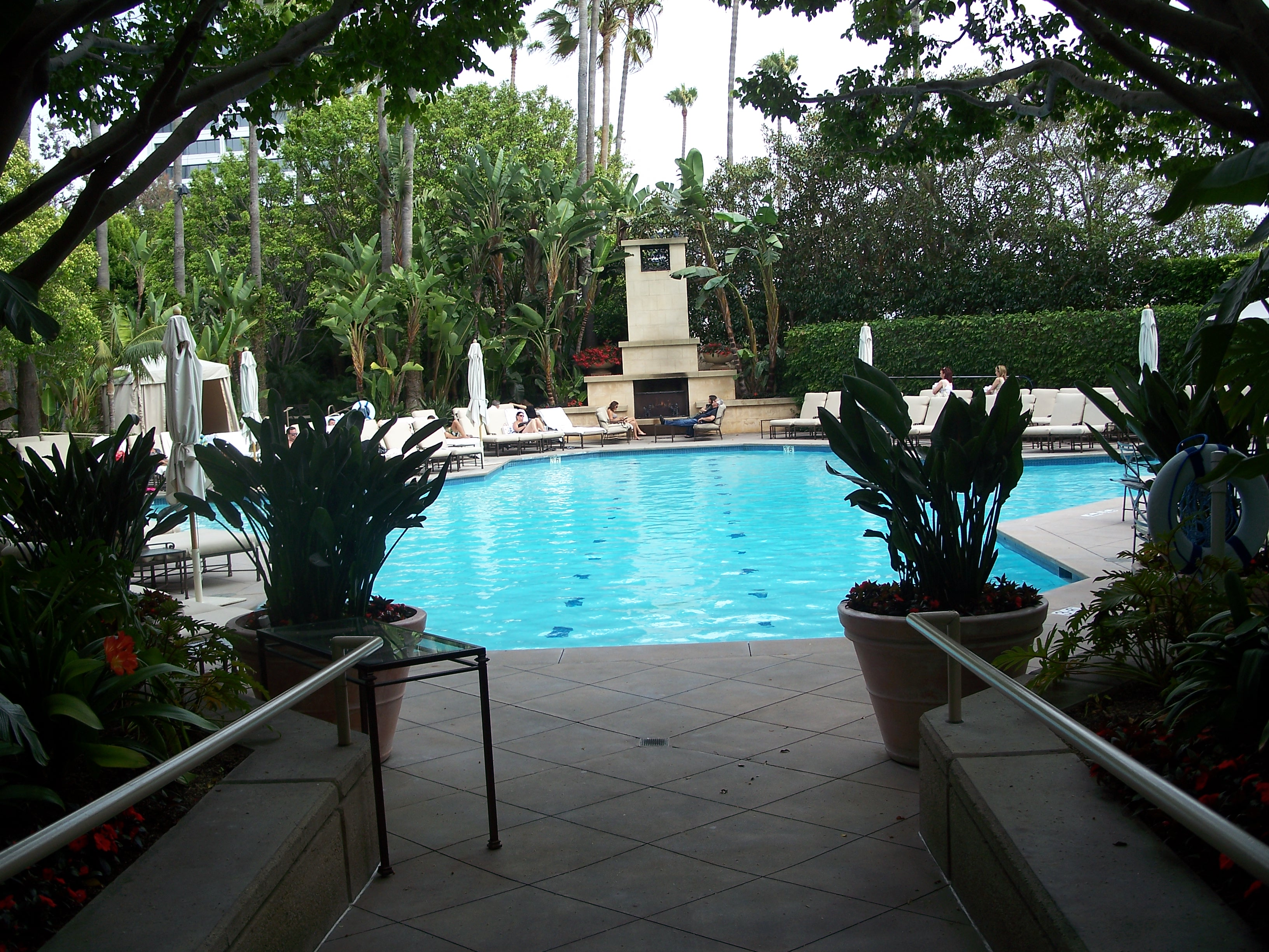 Pool The Island Hotel S Exotic Swimming